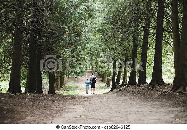 fils, automne, marche, famille, nature, père, parc, promenade, forest., ensoleillé, dehors, day., ou - csp62646125