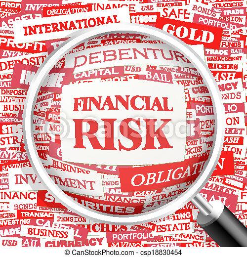 FINANCIAL RISK - csp18830454