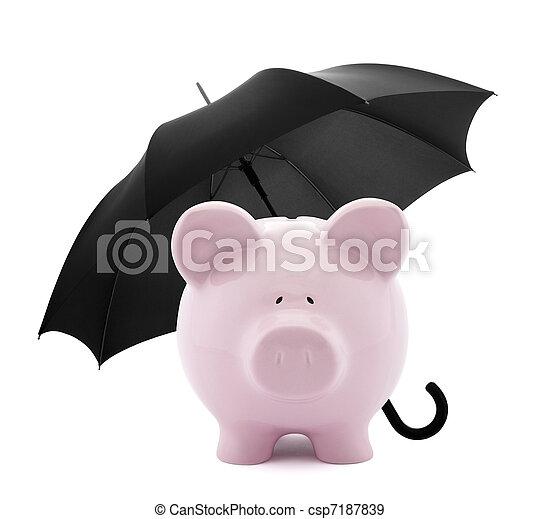 Seguro financiero - csp7187839