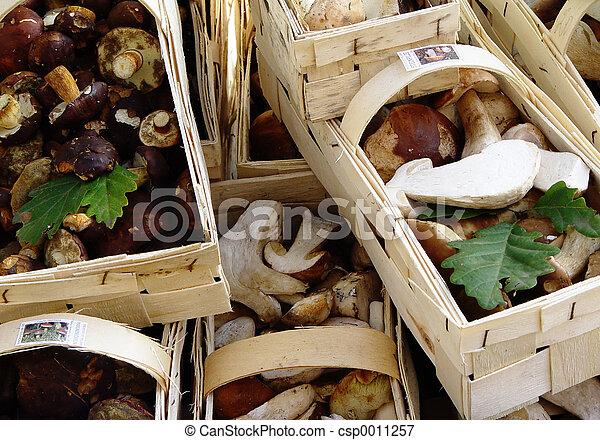 fine mushrooms - csp0011257