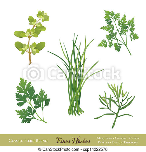 Fines Herbes, French Herb Blend - csp14222578