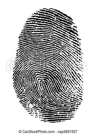 fingerprint - csp3691557