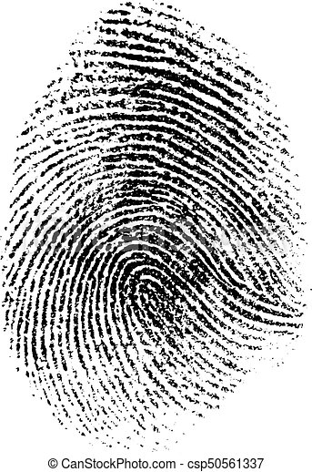 fingerprint vector illustration - csp50561337