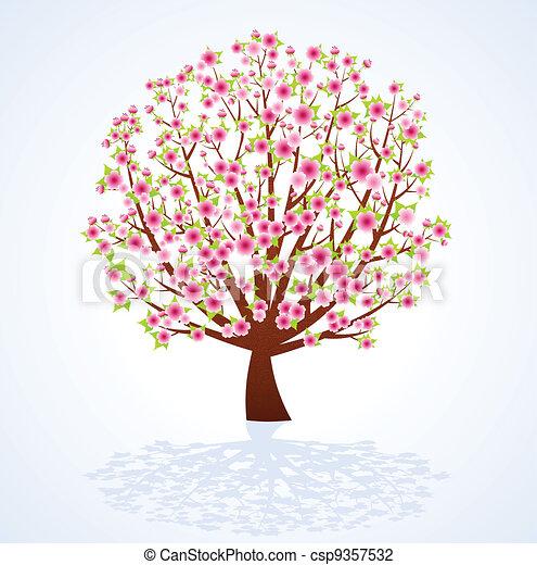 fiore, albero ciliegia - csp9357532