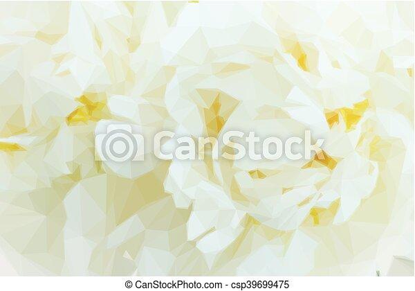 fiori bianchi, peonia - csp39699475