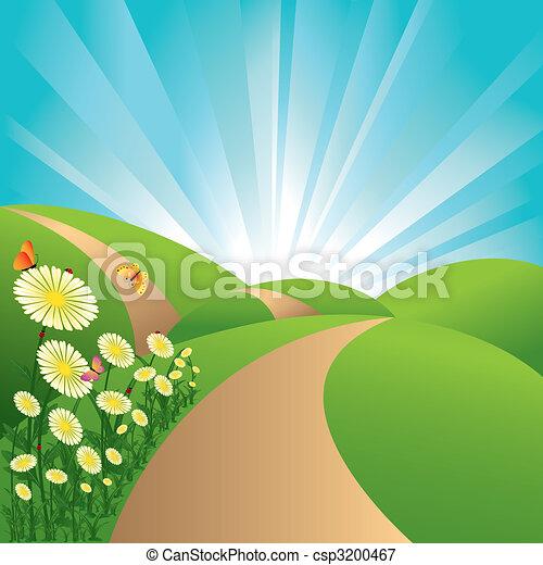 fiori blu, cielo, farfalle, campi, paesaggio, verde, primavera - csp3200467