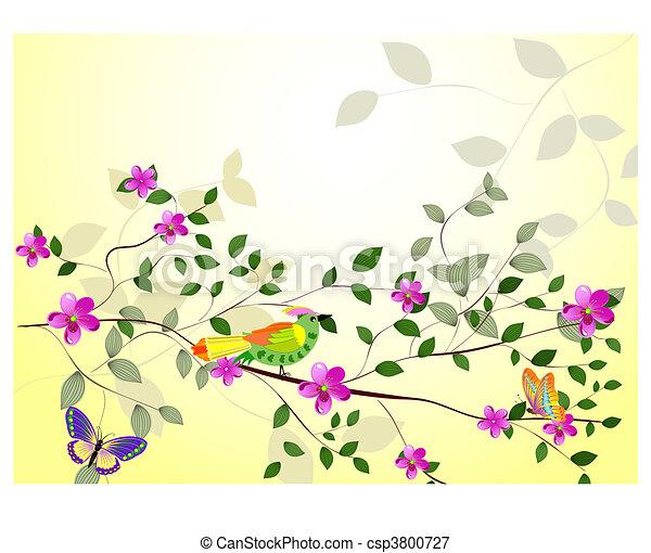 fiori, ramo albero - csp3800727