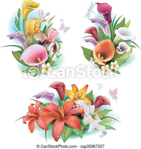 fiori tropicali, disposizione - csp35967027