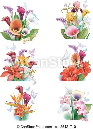 fiori tropicali, disposizione - csp35421710