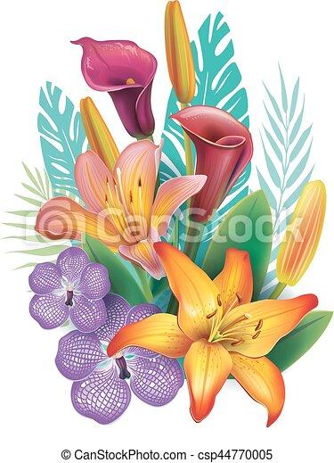 fiori tropicali, disposizione - csp44770005