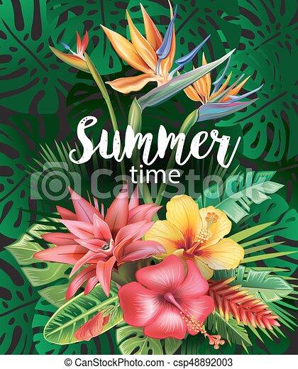 fiori tropicali, disposizione - csp48892003