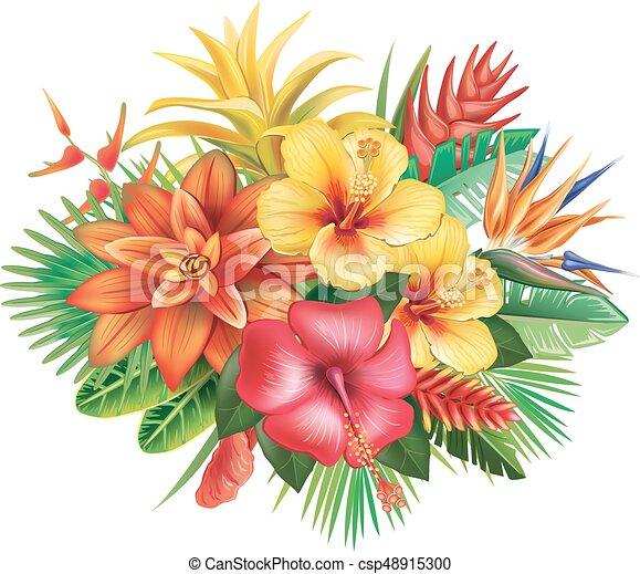 fiori tropicali, disposizione - csp48915300
