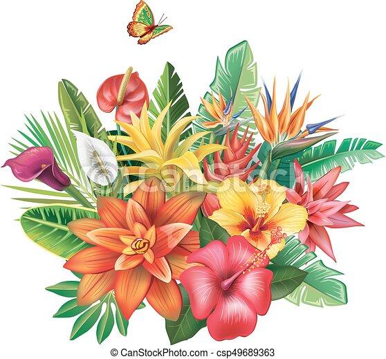 Fiori tropicali disposizione tropicale foglie fiori for Piani domestici tropicali
