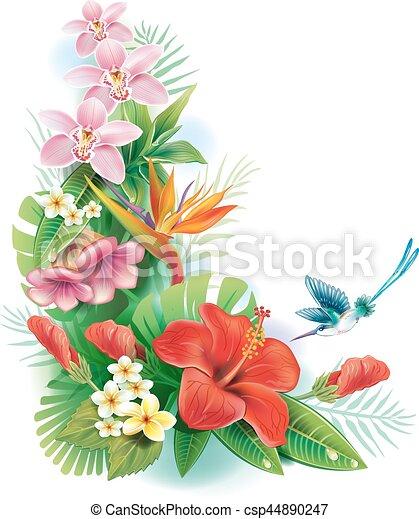 fiori tropicali, disposizione - csp44890247