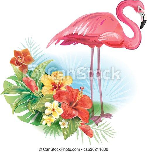 fiori tropicali, fenicottero, disposizione - csp38211800
