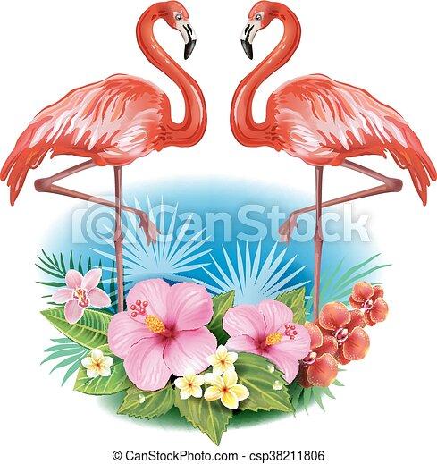 fiori tropicali, flamingoes, disposizione - csp38211806