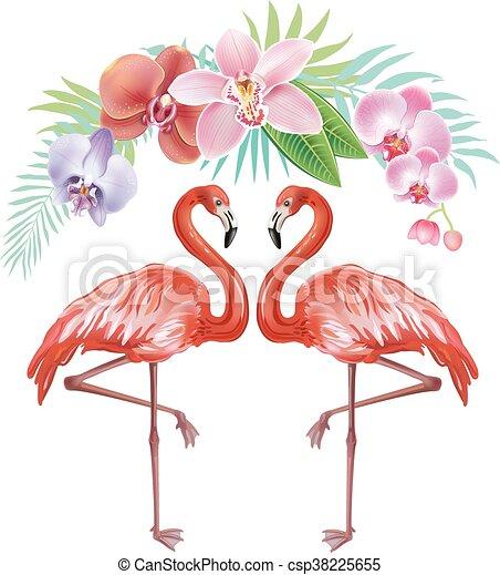 fiori tropicali, flamingoes, disposizione - csp38225655