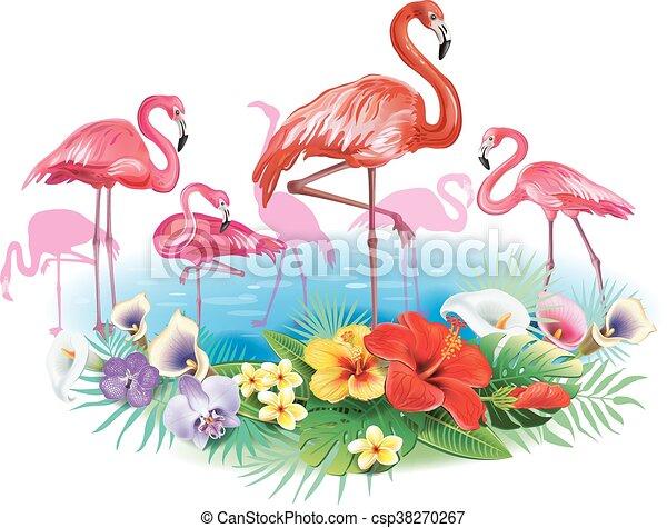fiori tropicali, flamingoes, disposizione - csp38270267