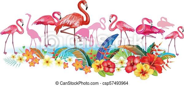 fiori tropicali, flamingoes, disposizione - csp57493964