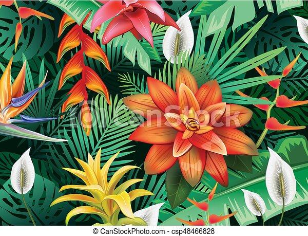 Fiori Tropicali.Fiori Tropicali Fondo Tropicale Foglie Fiori Fondo