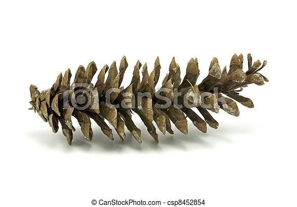 fir-cone - csp8452854