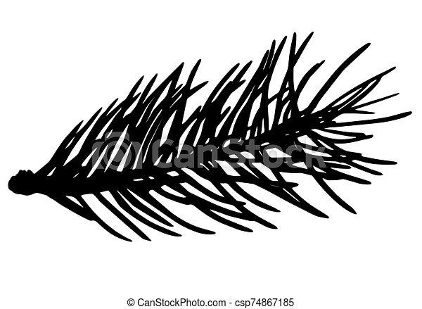 Fir tree branch silhouette, vector illustration. - csp74867185