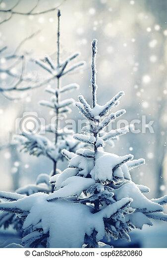 Fir-tree in snow - csp62820860