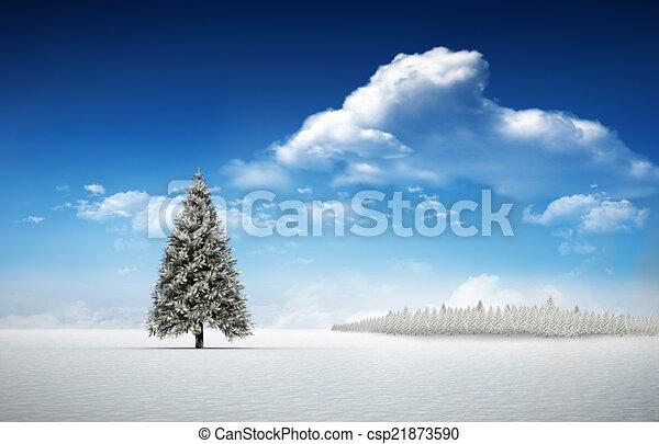 Fir tree in snowy landscape - csp21873590