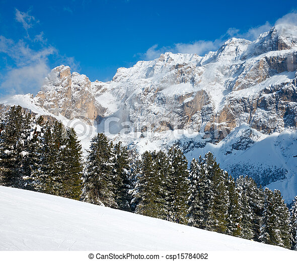 Fir trees on a mountain slope - csp15784062