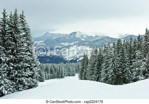Fir trees on winter mountain - csp2224179