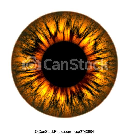 fire eye - csp2743604