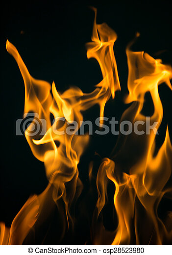 fire flames on a black background - csp28523980