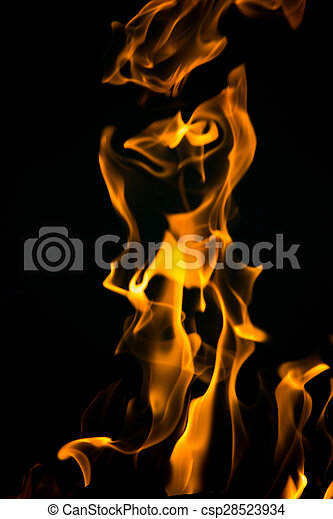 fire flames on a black background - csp28523934