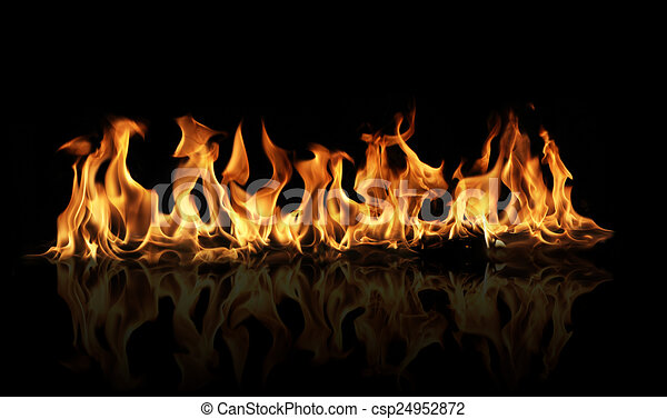 Fire flames on black background - csp24952872