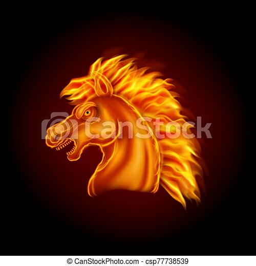 Fire horse head isolated on black background - csp77738539