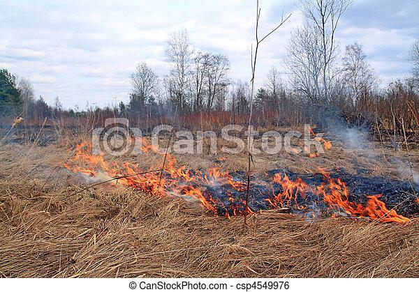 Fire in Grass - csp4549976