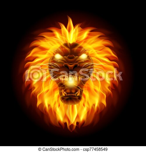 Fire lion head isolated on black background - csp77458549