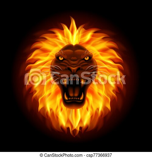 Fire lion head isolated on black background - csp77366937
