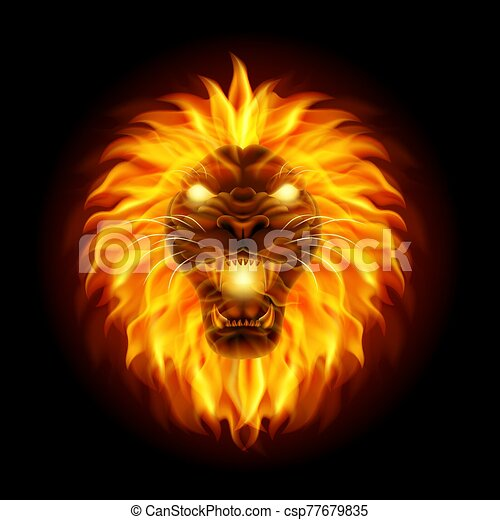 Fire lion head isolated on black background - csp77679835