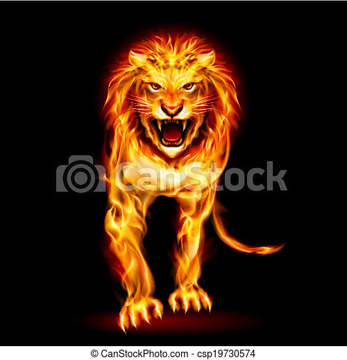 Fire lion - csp19730574