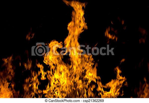 fire  - csp21362269