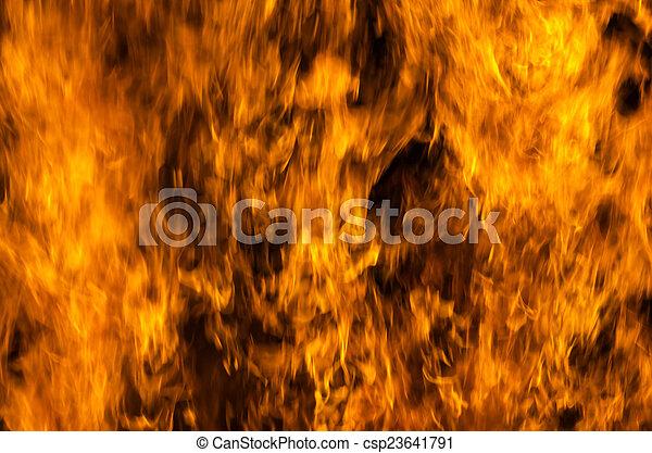 fire  - csp23641791