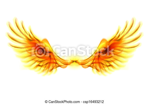 Fire wings.  - csp16493212
