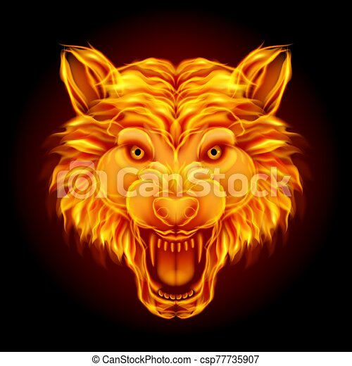 Fire wolf head isolated on black background - csp77735907