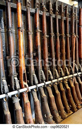 Firearms - Shotguns and  Rifles - csp9620521