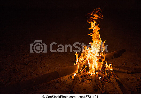 firecamp in night time 8 - csp15731131