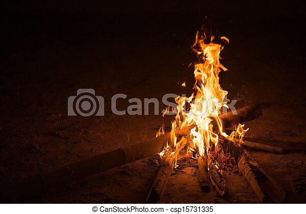 firecamp in night time 9 - csp15731335