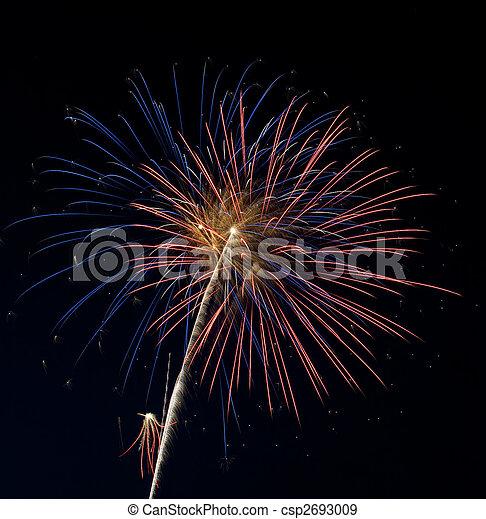 Fireworks - csp2693009
