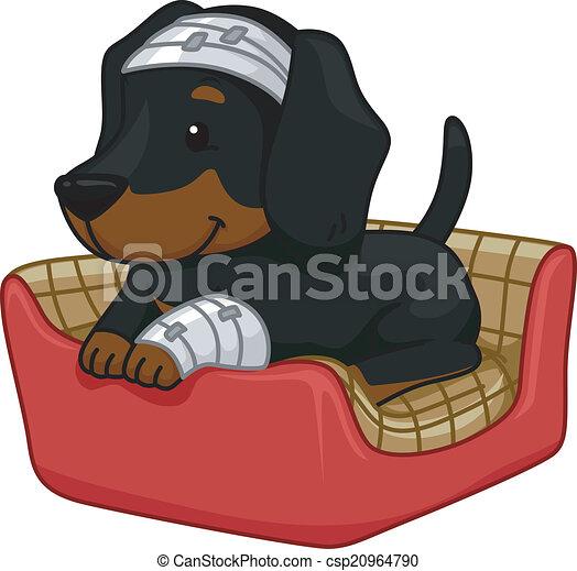 First Aid Dog - csp20964790