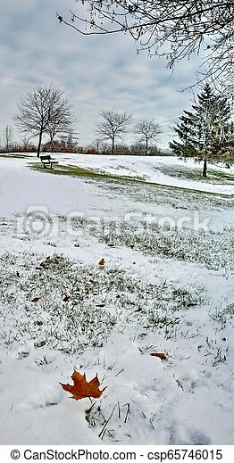 first snow - csp65746015